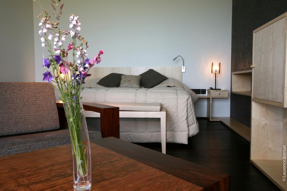 Hôtel 4 étoiles Régis & Jacques Marcon - Suite